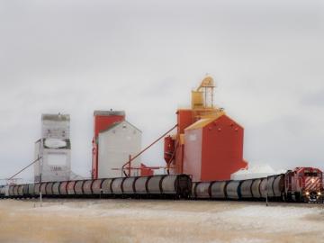 Train & Grain