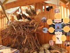 Goldstream Provincial Park: Visitor Centre