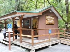 Goldstream Provincial Park: Concession Stand