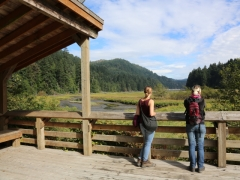 Goldstream Provincial Park: Lookout