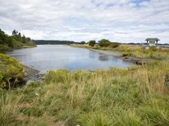 Esquimalt Lagoon: Emily Carr Campsite